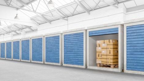 Self Storage Market Report January 2021
